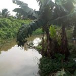 11 Year Old Boy Drowns In Akwa Ibom