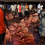 How Safe Is The Beef From Our Abattoir?