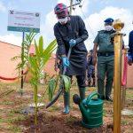 Sanwo-Olu Applauds Health Workers' Sacrifice As Lagos Marks 2020 Tree-Planting Day