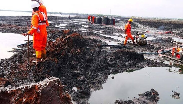 ogoni land clean up